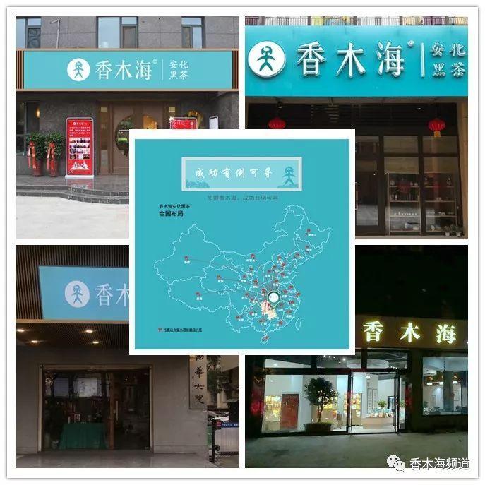官宣!香木海石家庄运营中心,今日10月16日隆重开业!